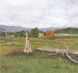 Carolina Farm