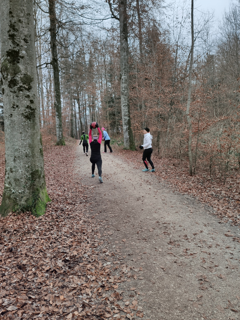 Waldtraining im Winter