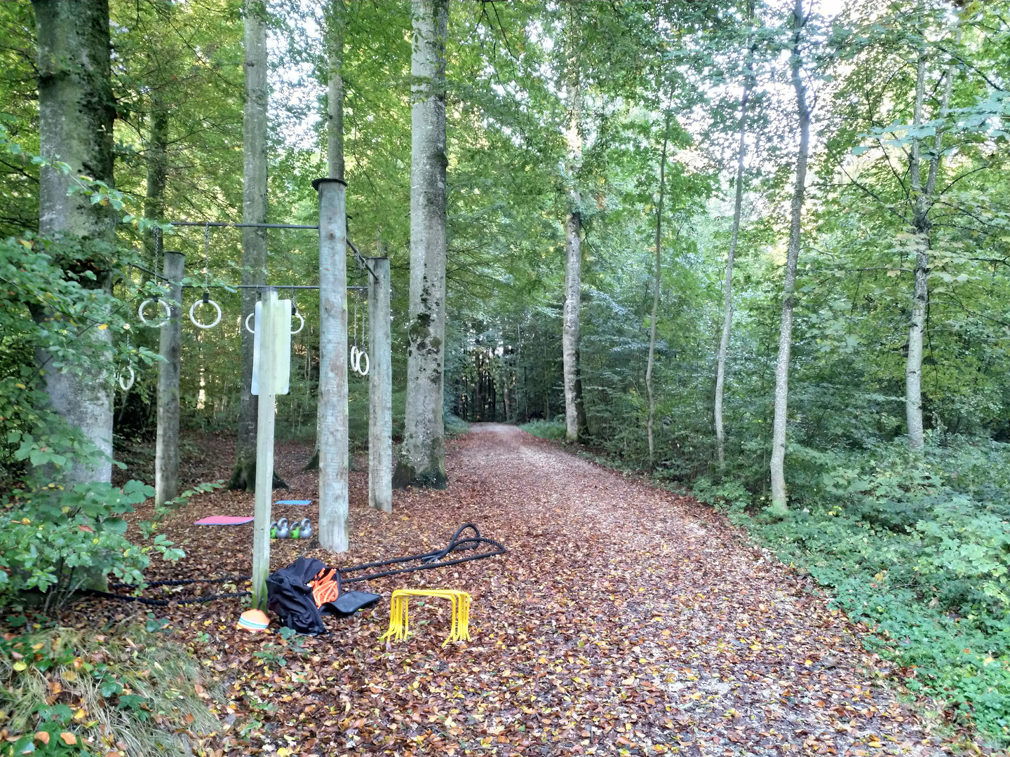Location Waldtraining