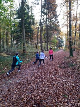 Waldtraining im Herbst