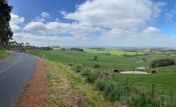 Bass Hills