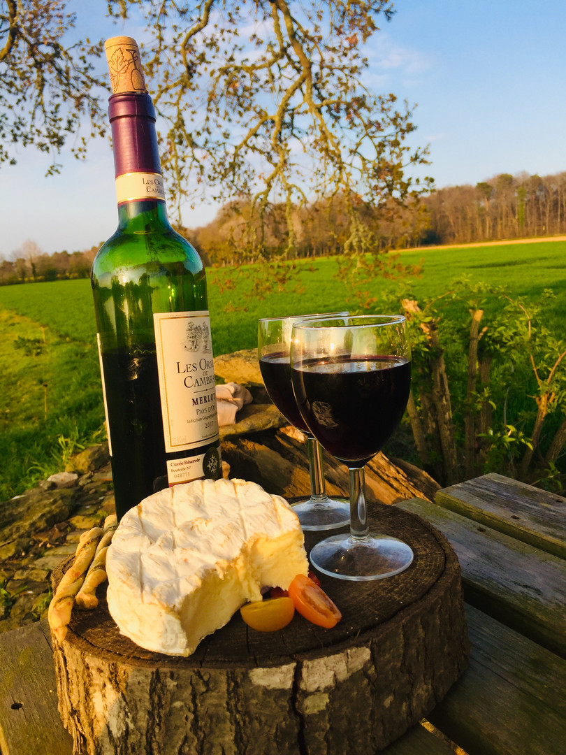 Relaxing in the garder with some wine and cheese