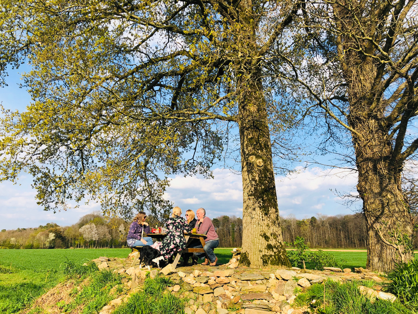 Relaxing in the grounds of La Ville Mainguy