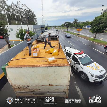 PMESP REALIZA APREENSÃO DE MAIS DE 12 TONELADAS DE MACONHA