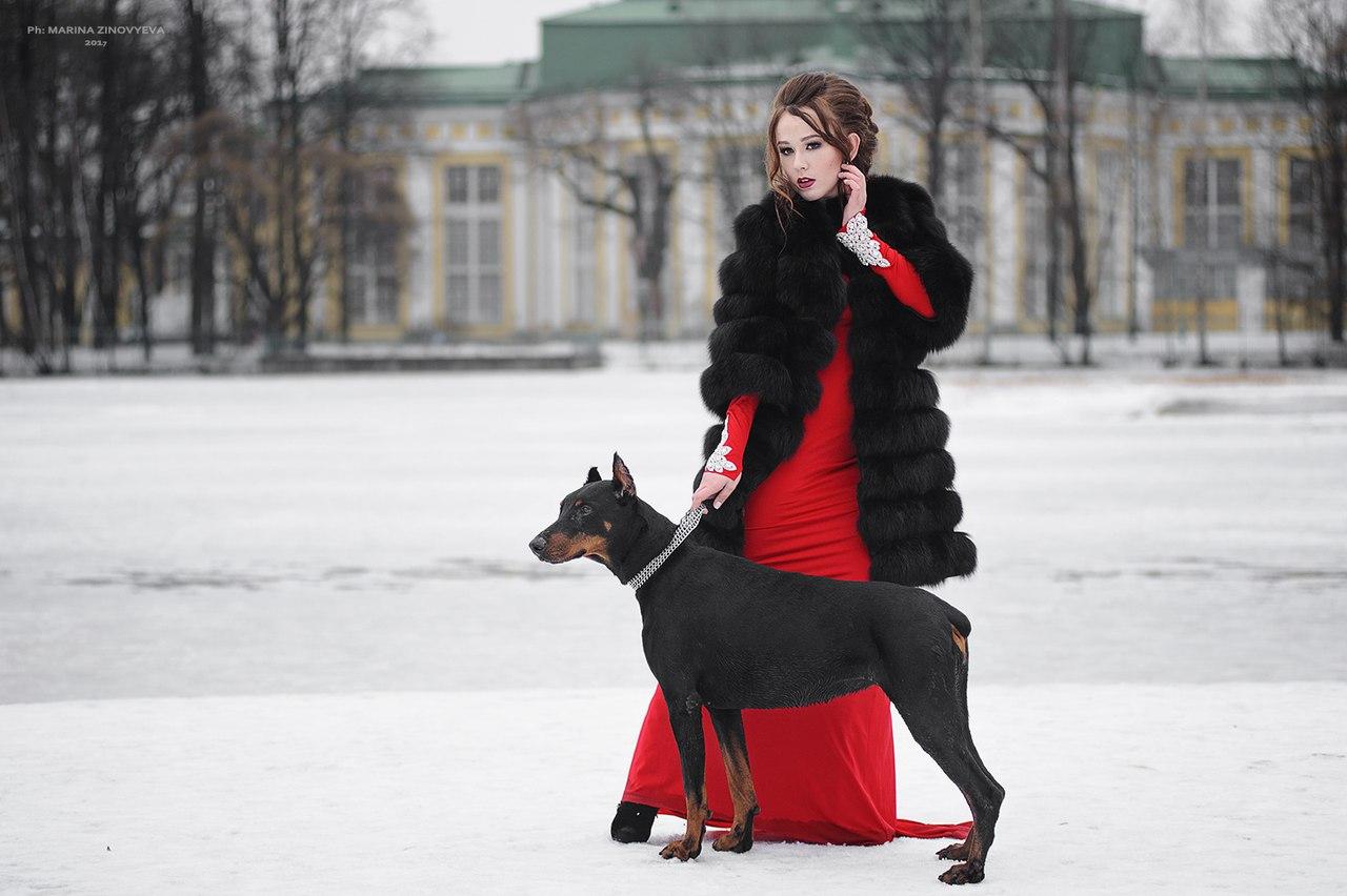 Фотосессия с собакой
