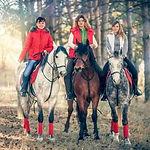 Катание на лошадях в СПб