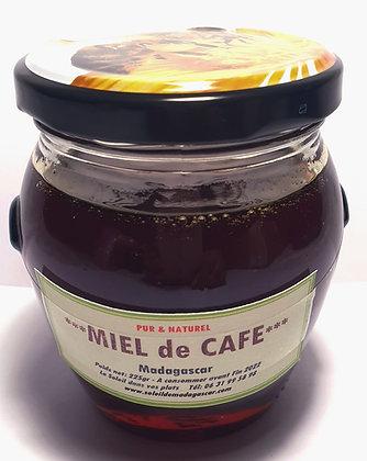 Miel de CAFE Arabica de Madagascar