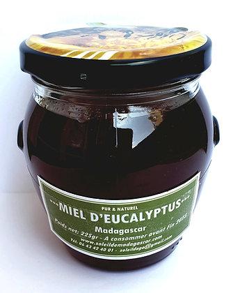 miel d'eucalyptus le soleil de madagascar