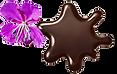 Шоколадное пятно и иван-чай.png