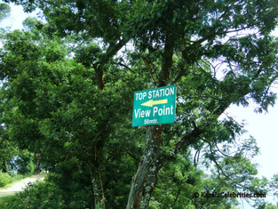 Top Station (Munnar) - View Point