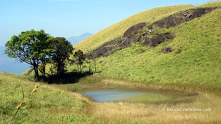 Exploring Wayanad and Around: First ever long-winded drive with buddies !