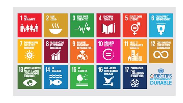 Objectifs-developpement-durable-zen-2050