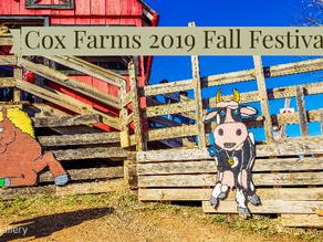 Cox Farms 2019 Fall Festival