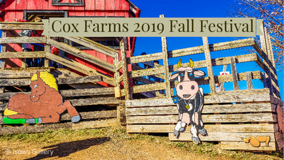 Cox Farms 2019 Fall Festival
