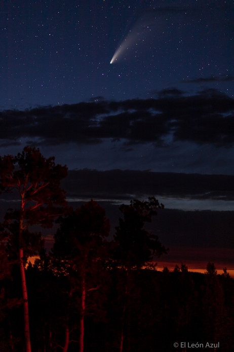 Comet and Trees