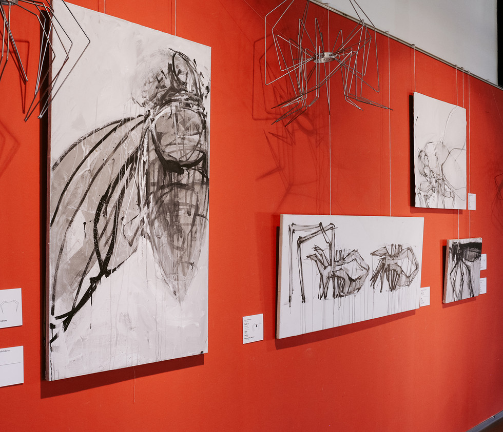insect / antonov gallery