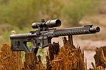 IMG_7945-Rifle-07-13-18-WR.jpg