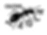 Logo_Taoca_Preto.png