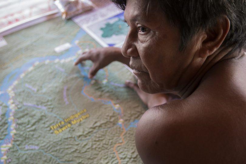 Amazonia SA.jpg