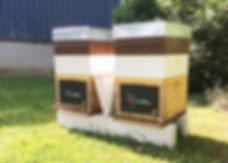 moulan ruche.jpg