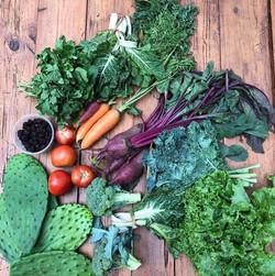 Verduras del huacal chico