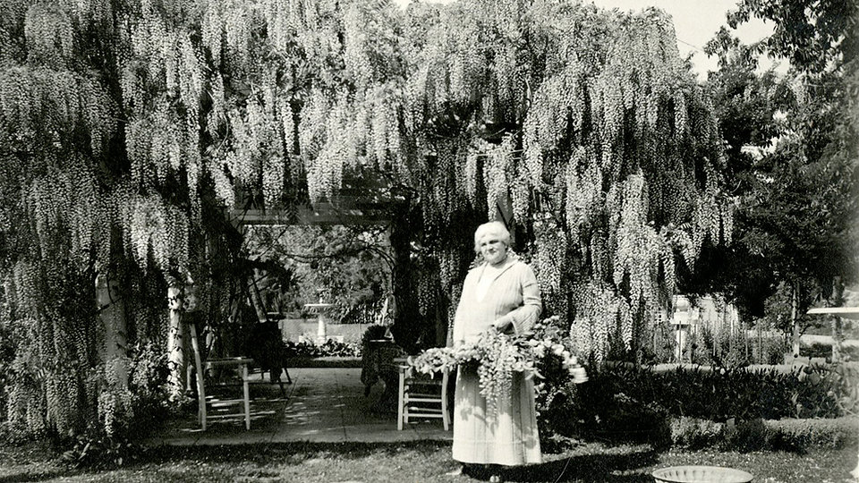 Ida J.jpg
