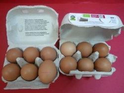 Huevos certificación ecológica docena