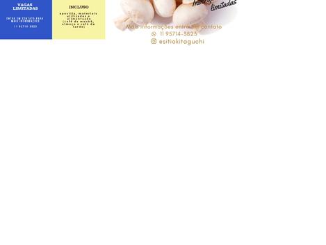 Sítio Kitaguchi - Curso de cultivo de cogumelos