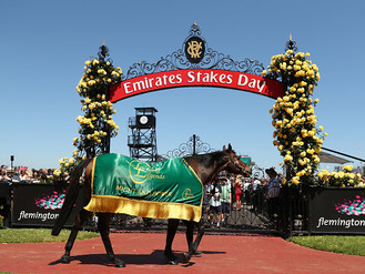 2017 Melbourne Cup Carnival wrap-up