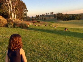 Family Fun at Yarra Valley Lodge