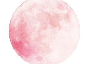 Full Moon Wisdom from Qurantine