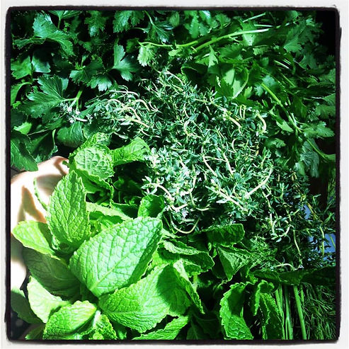 Fresh Herbs, Herbalism, Plant Food