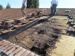 tear off shingle roof