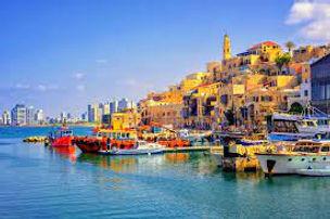 Learnings From Tel Aviv: The Vegan Capital of The World