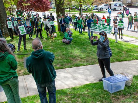 Save Centennial Woods