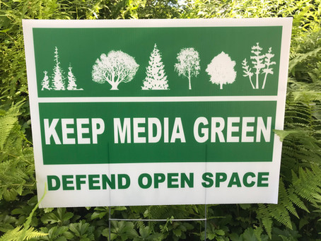 A sign that Media is going GREEN
