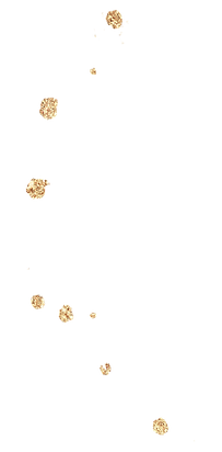 gold (56).png