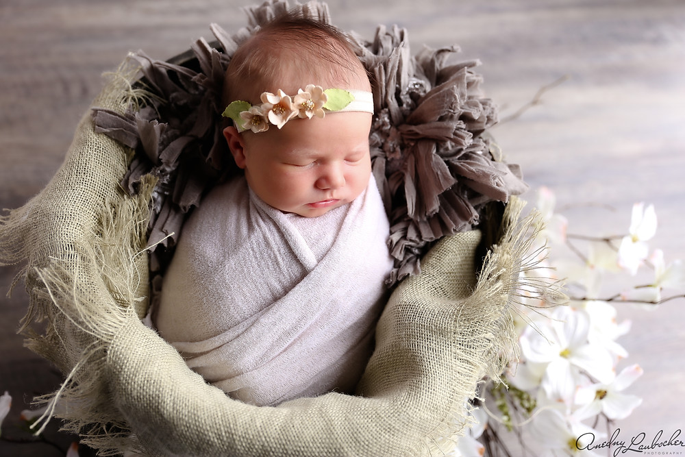 Cypress TX, newborn photographer