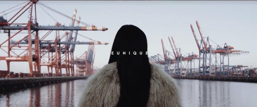Spotify Dokumentation Eunique