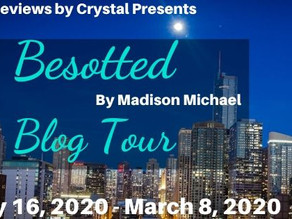 Welcome Author Madison Michael!