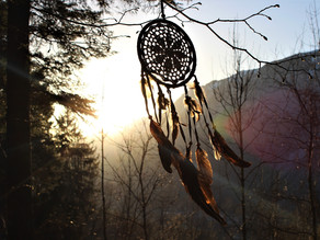 The Dream Catcher: Did you know?