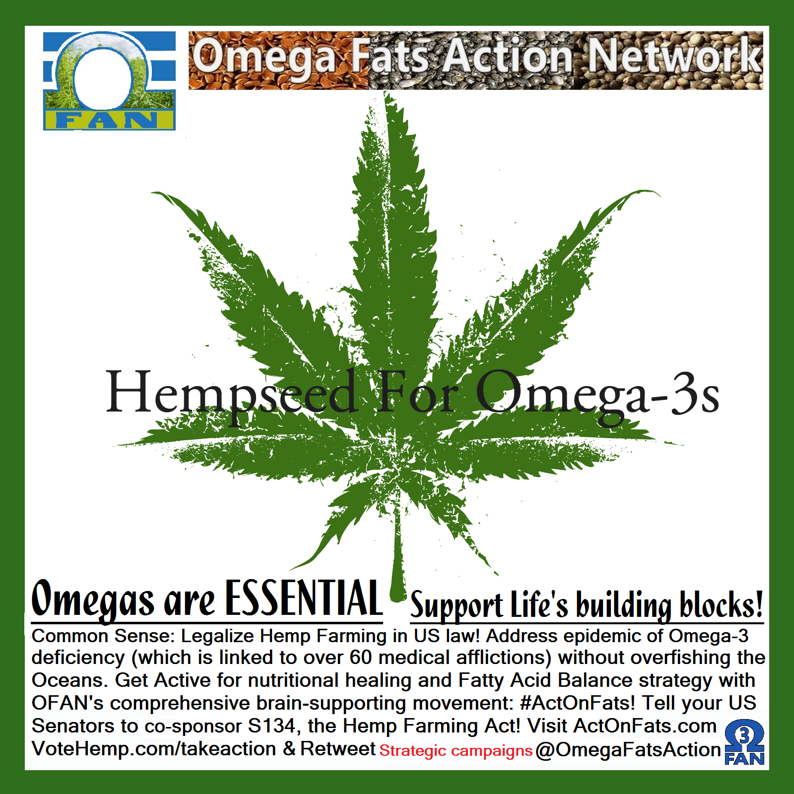 Hemp Seed For Omega 3's Meme.png