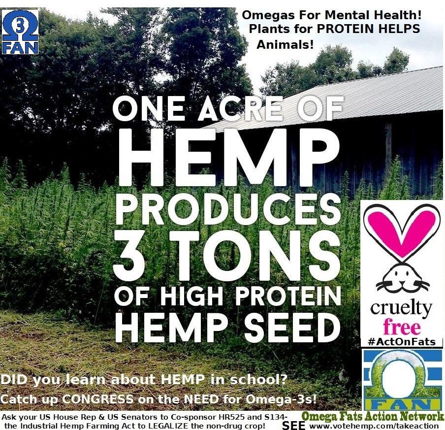 hemp seed per acremar 23.jpg