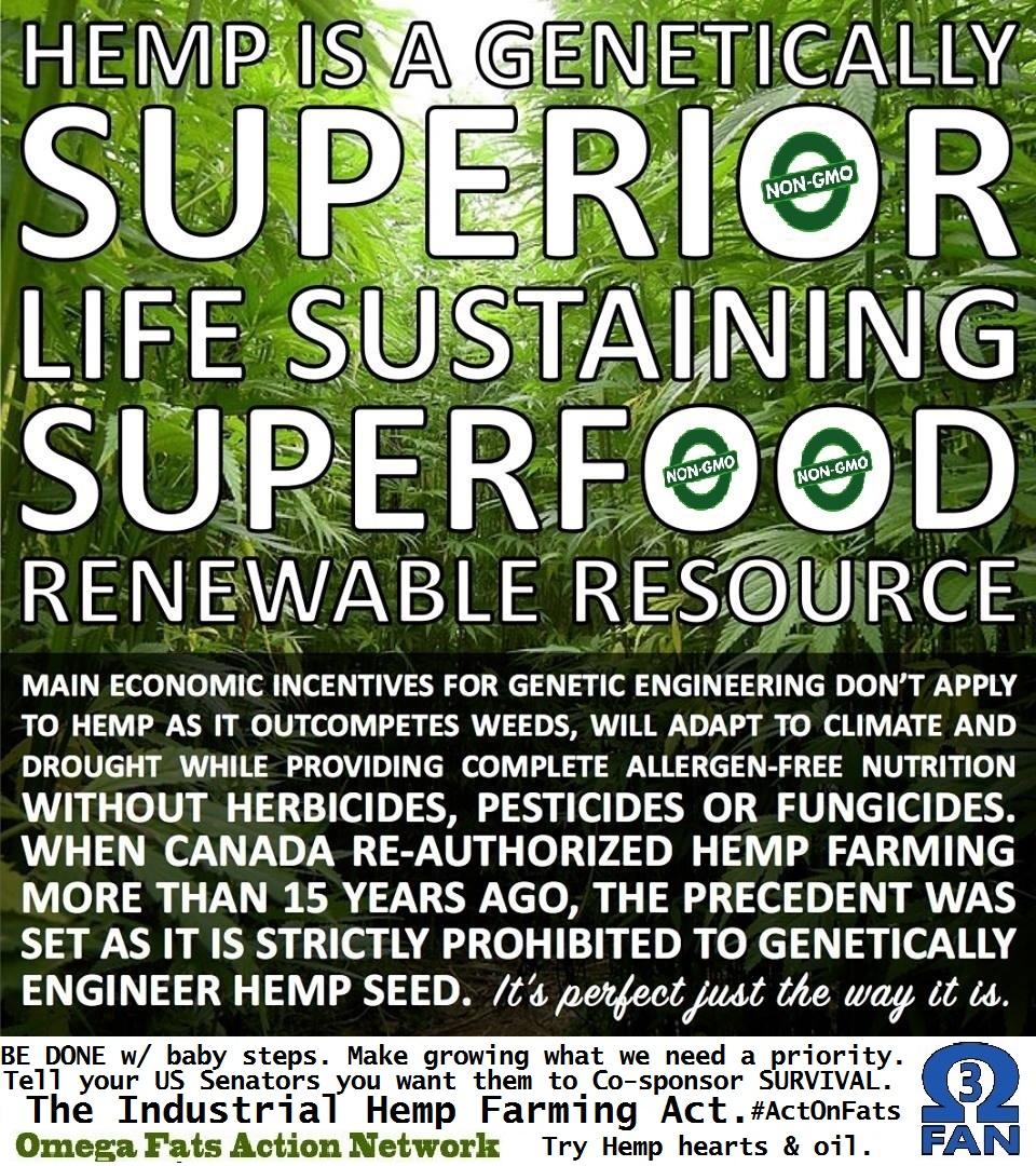 Non GMO, Hemp = superior