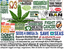 Weed Shrinking Cancer & the Hemp breakfast struggle