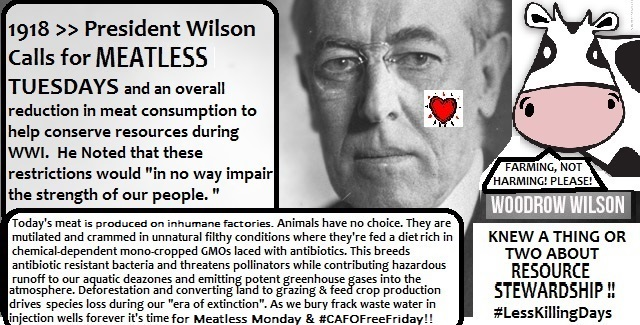 Woodrow-Wilson.jpg