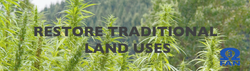 Restore Tradition with HEMP FARMING