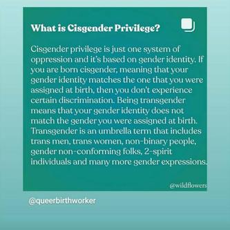 Trans Rights Matter! Activist Statement