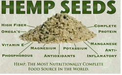 hemp seeds valuable.png
