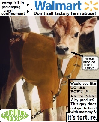 no veal insta.png